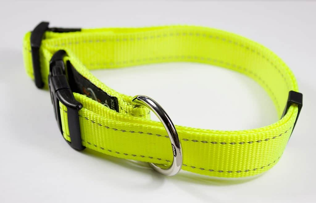 Best Reflective Dog Collar Reviews