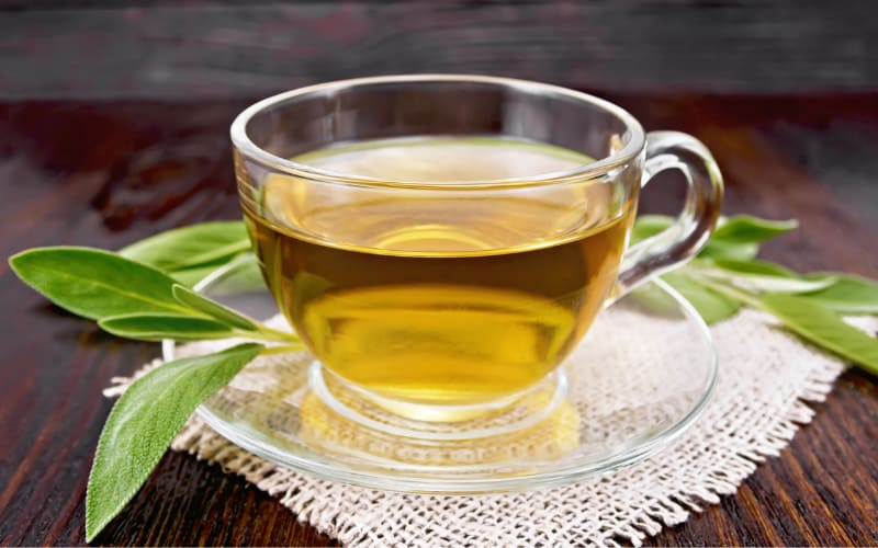 Green Tea For Dogs
