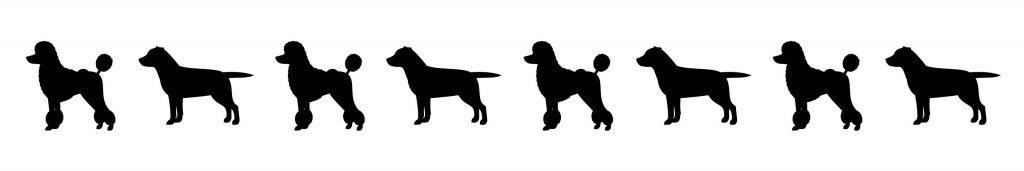 Lab Poodle Dog Silhouettes