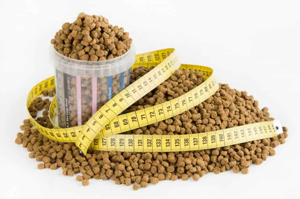 Measure Dog Food